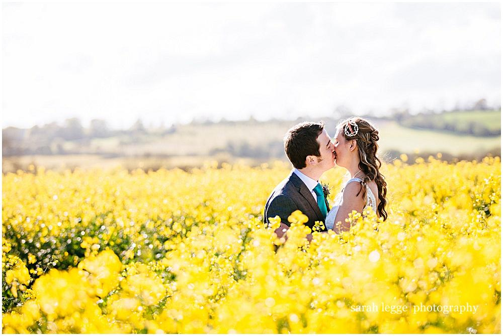 Kissing in a yellow field