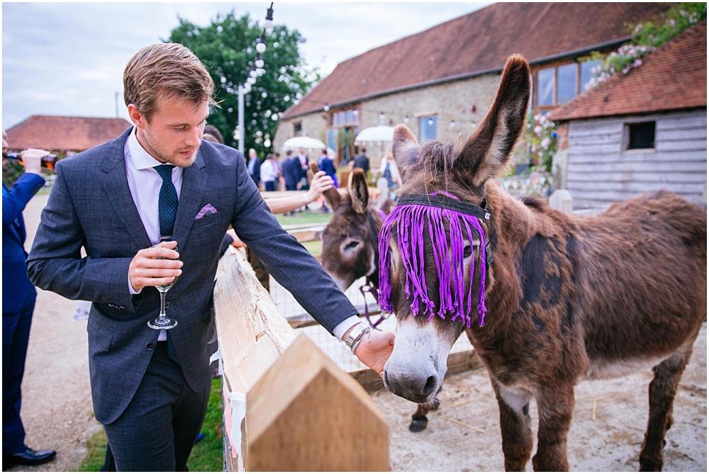 Grittenham barn donkey