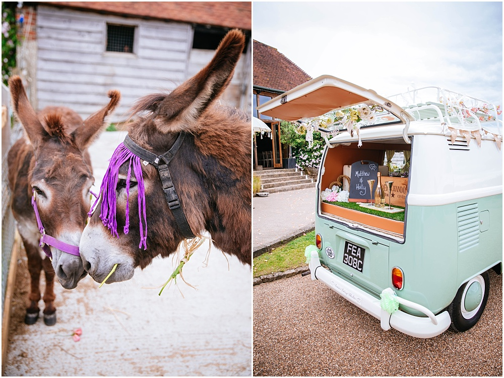 Grittenham barn donkeys