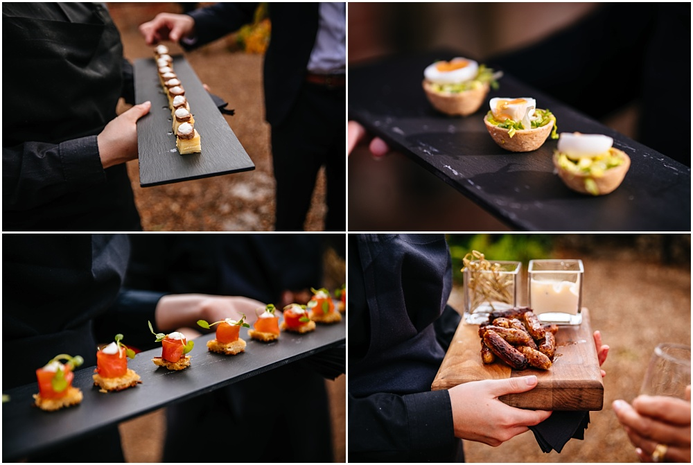 absolute taste delicious canapes