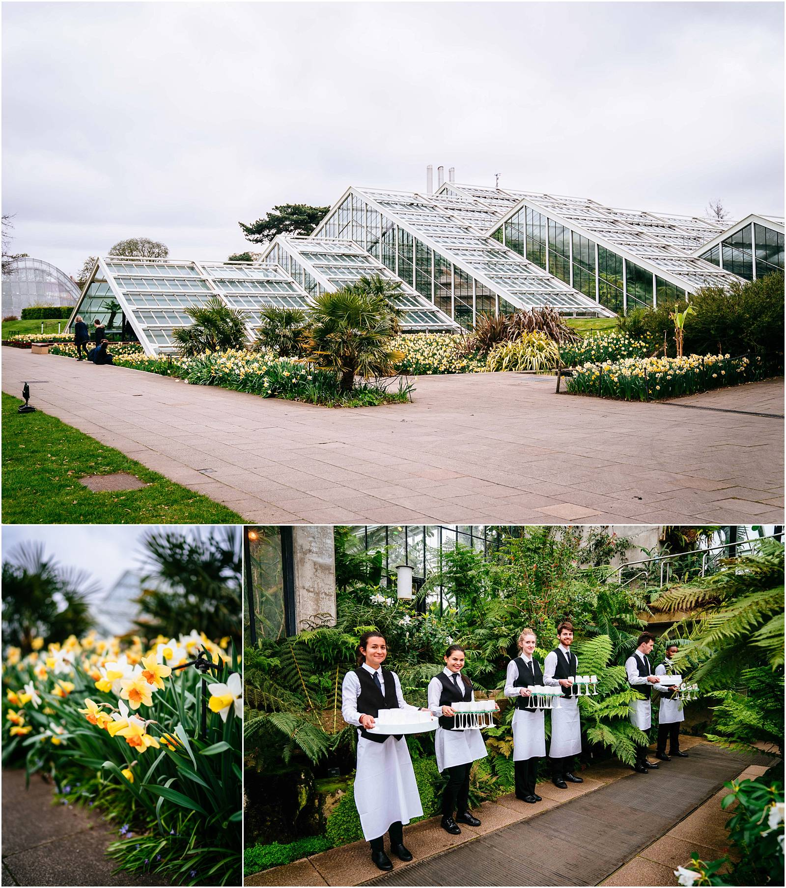 Wedding reception at the princess of wales conservatory